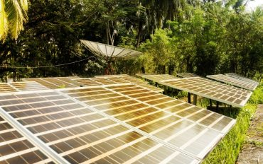 Large solar panels in the rainforest. Alternative solar energy. Solar powered satellite dish. photovoltaic battery in the forest among the palm trees